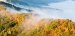 fog flows through Cumberland Gap
