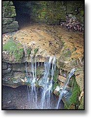 A view of Sinking Spring. The water source for the Lincoln Family during their time on the birthplace farm.