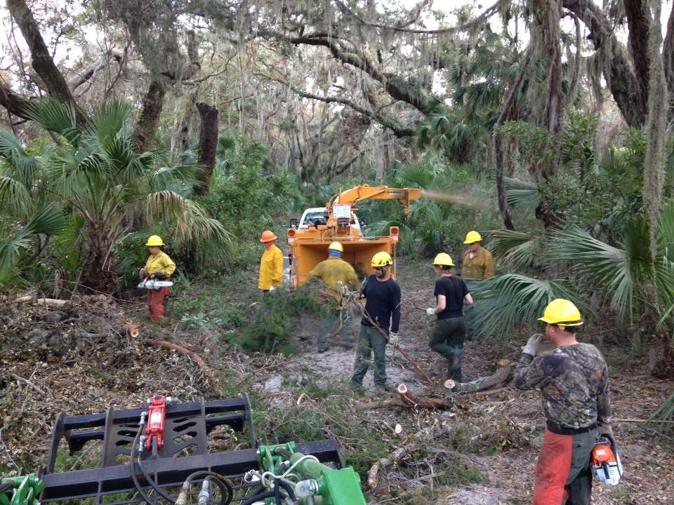 saw crewmembers with chainsaws and heavy equipment amidst fallen trees and limbs