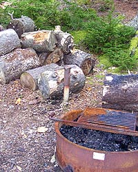Pile of cut wood next to fire ring