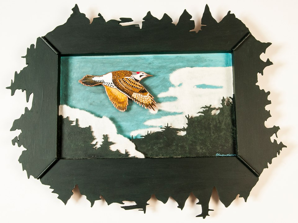 Shadowbox art featuring a Flicker bird inside