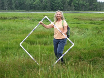 Nanette in Bass Harbor marsh