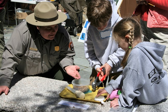 Ranger demonstrating seed dispersal of acorns while kids use tools