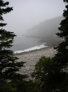 Cobblestone beach in fog