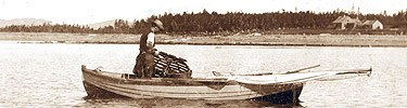 A man hauls a lobster trap into his boat by hand in 1894.