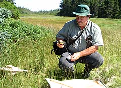 A researcher kneels to check his sweep net for specimens.