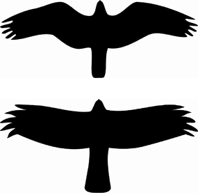 Raptor Silhouettes (Osprey and Northern Harrier)