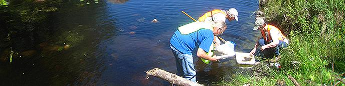 Collecting specimens in water.