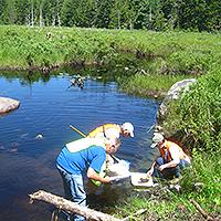 Researchers investigating water specimens.