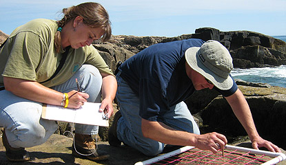 Two researchers crouch near shore, one writing, one counting species.