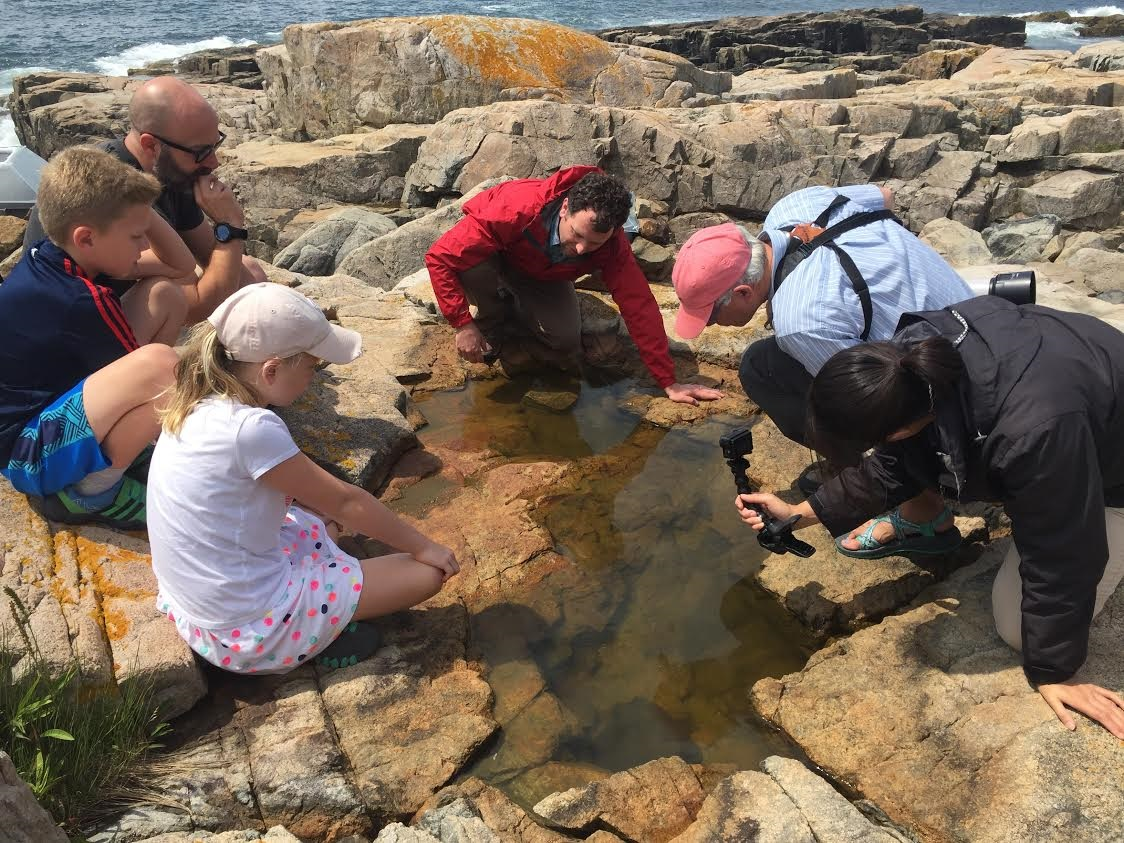 A group of people study a pool of water on rocky coastline