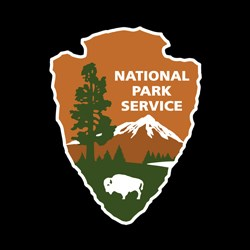 NPS Arrowhead Brand with Black Background