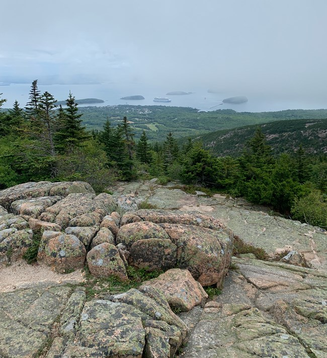 Hawk Watch site on Cadillac Mountain