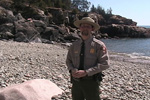 Park ranger stands on cobblestone beach