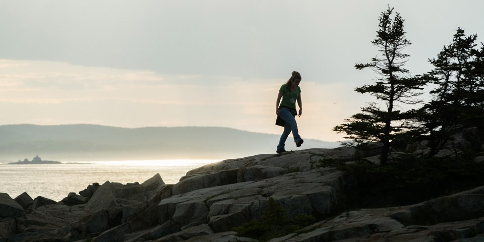 Image result for maine island trail