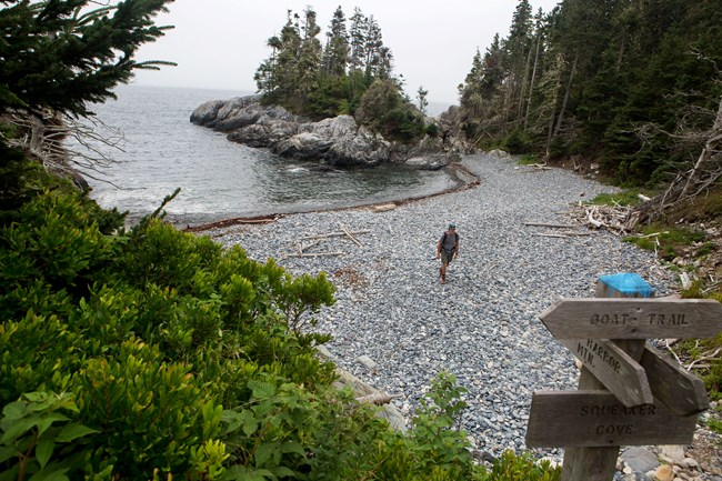 Person standing on a rocky coast near trail signs