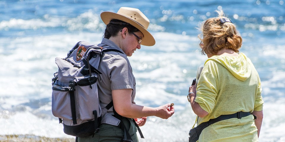 Ranger holds a tide pool creature in conversation with visitor