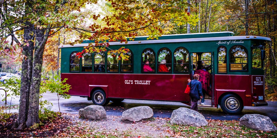Woman climbs onto a tour bus surrounded by trees in fall colors