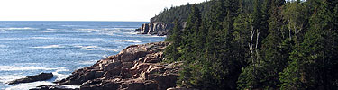 The ocean meets granite cliffs topped by evergreens.
