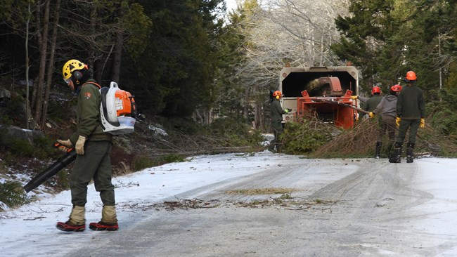 Workers in winter gear and hard hats feed branches into a chipper, and blow debris from road