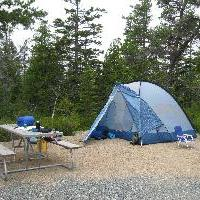 Campsite in Schoodic Woods Campground.