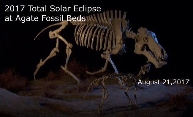 This Solar Eclipse logo for Agate Fossil Beds National Monument features the Dinohyus and the Beardog.