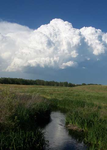 Thunderheads are common in the summer months.