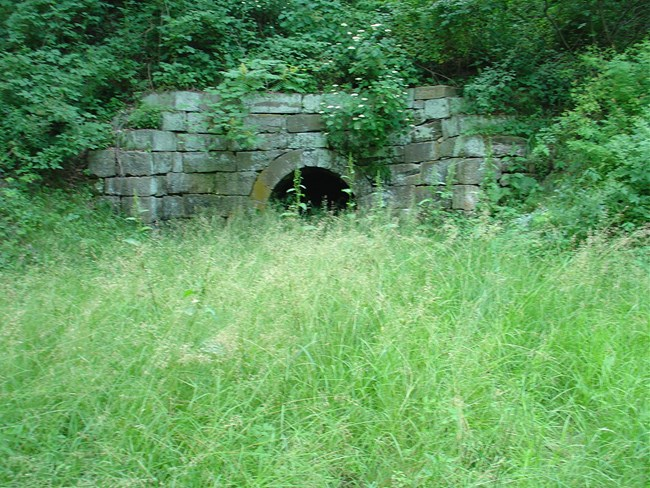 Photo of a culvert along the trail