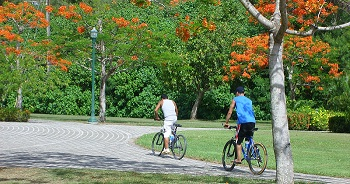 Bicycling in the Park