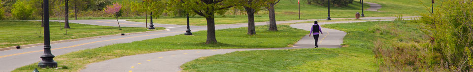 A person walks on a curving, paved trail in Anacostia Park