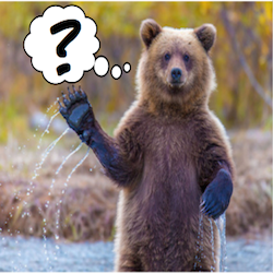 Click to go to Main FAQ page on AlaskaCenters.gov... FAQs icon with bear standing in a river.