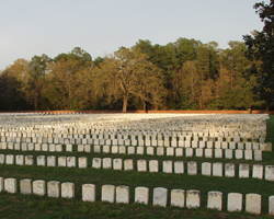 A large group of headstones in sunset lighting