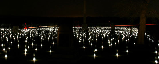 Candle luminaries illuminate a night setting