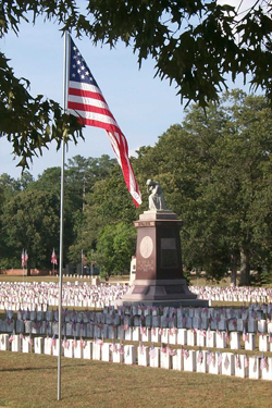 A flag appears in the foreground before a monument with a grieving woman figure surrounded by headstones.