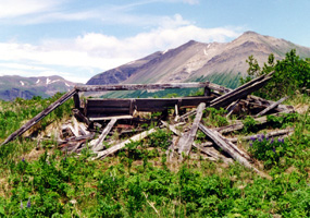 Remains of an historic cabin in Aniakchak National Monument.