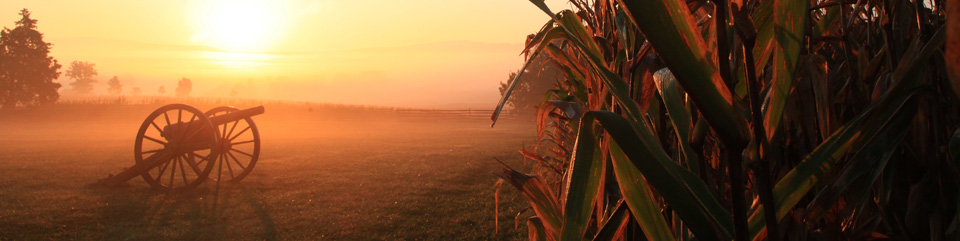 Cannon and Cornfield at Dawn