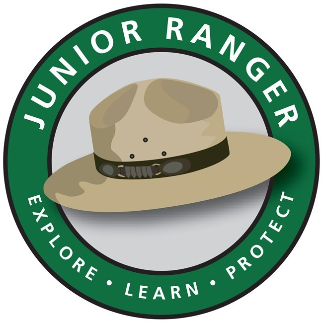 Vector art with tan ranger stetson-style hat in center with green circle around it. White letters in the green band read: Junior Ranger: Explore, Learn, Protect