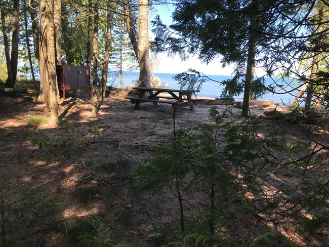 A forested campsite with a metal fire ring and bear proof box, with a view of the lake.