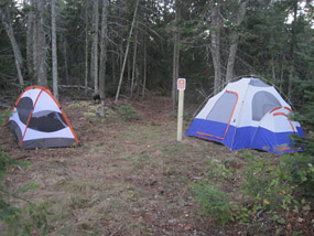 Outer Island Campsite #1