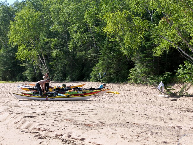 4 kayaks and people lined up on a sand beach in front of a forest.