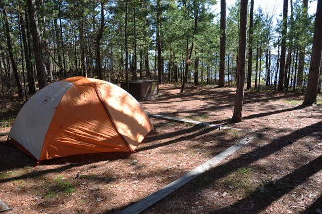 An orange tent set up in a forest camp site.