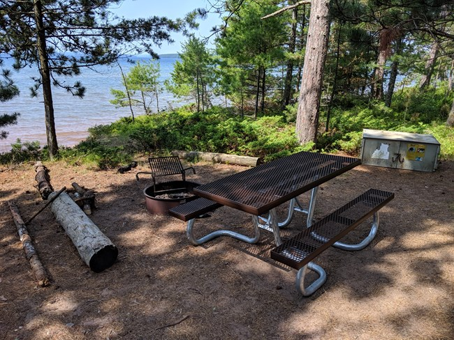 A forested campsite with a metal fire ring, picnic table, and bear proof box.