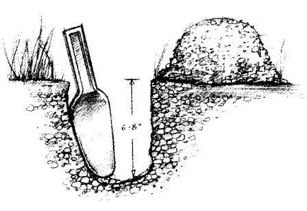 Trowel digging a cathole in the ground for human waste. The hole is six to eight inches deep.