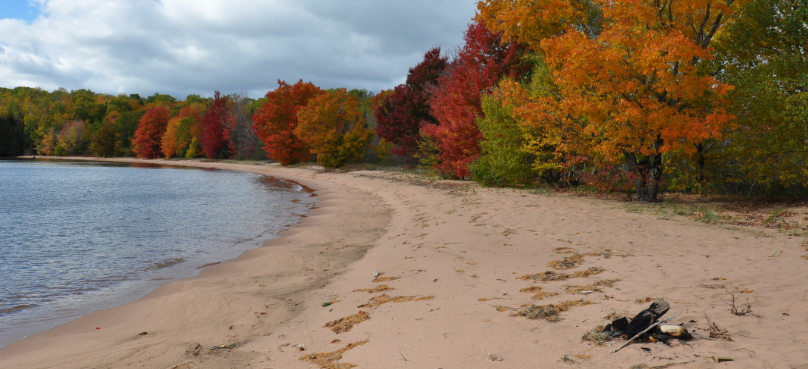 A sandy shoreline next to a forest changing into fall colors or red, yellow, and orange leaves.