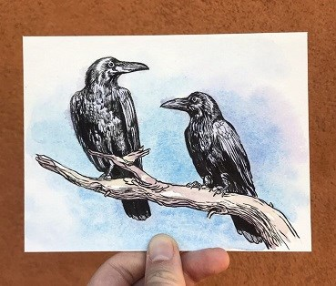watercolor illustration of two ravens on a branch
