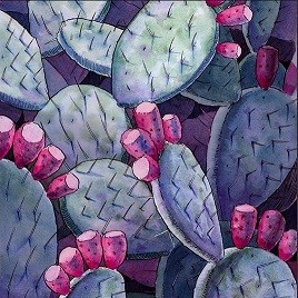 watercolor illustration of prickly pear cactus pads and fruit