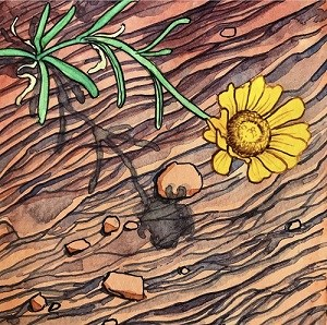 in a painting, a single yellow flower grows over layers or red rock