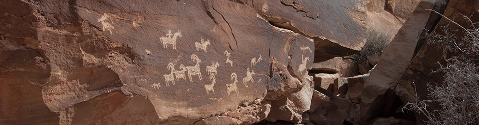 a rock wall with animal petroglyphs on it