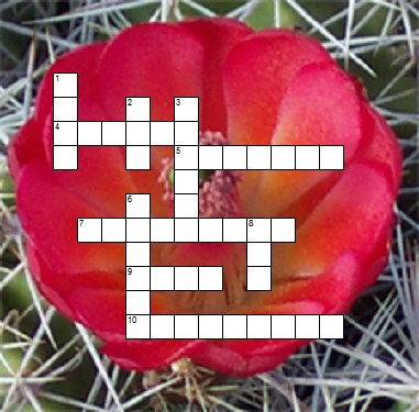Desert Adaptation Crossword Puzzle