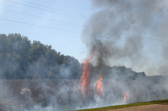 Prescribed fire at Arkansas Post